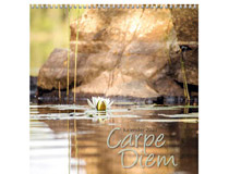 Väggkalender Carpe Diem 2021