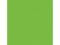 Papper Rainbow A4 80g intensivgrön 500st/paket