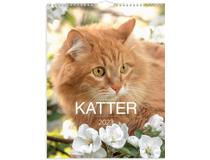 Djurkalender Katt 2022